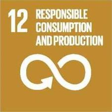 Sustainable development goal 12, responsible consumption and production