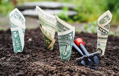 Planting-bank-notes